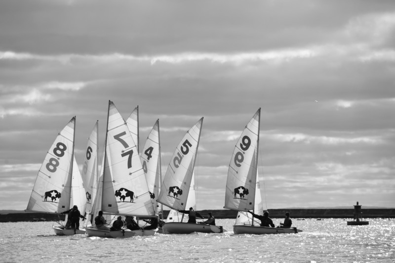 20131103-High School Sailing BYC 2013-166.jpg