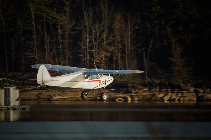 3.3.18 - Beaver Lake: Low flying bird.