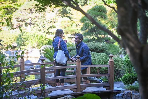 Niroshan Japanese Gardens Proposal, San Francisco.