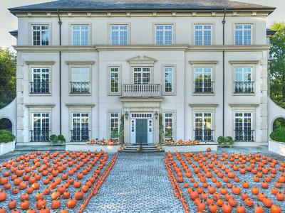 Dorsey Alston 2020 Pumpkin Patch