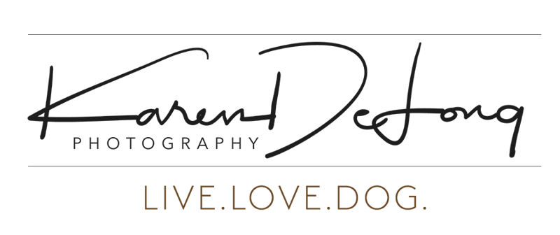 KDP LIVE LOVE DOG LOGO CROP.png