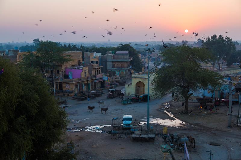 India-203.jpg