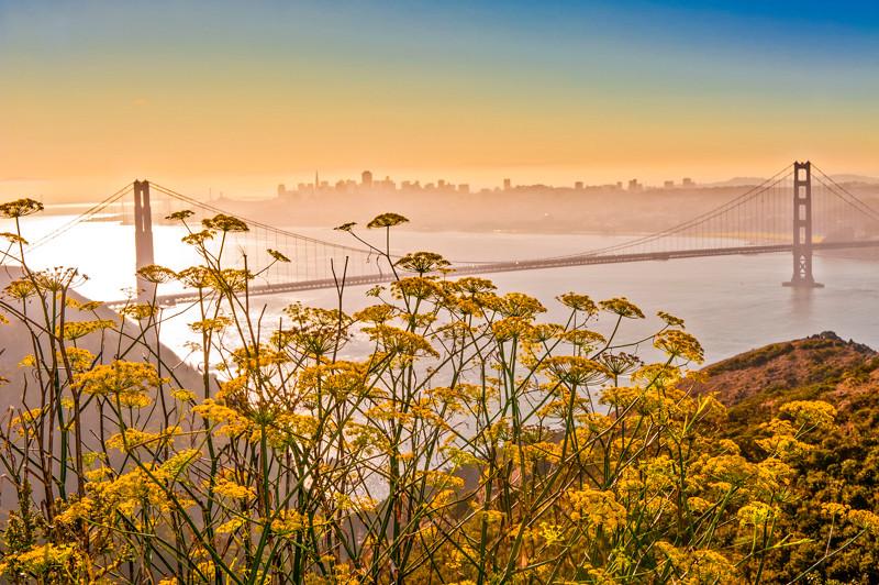 Golden Gate Bridge (9).jpg