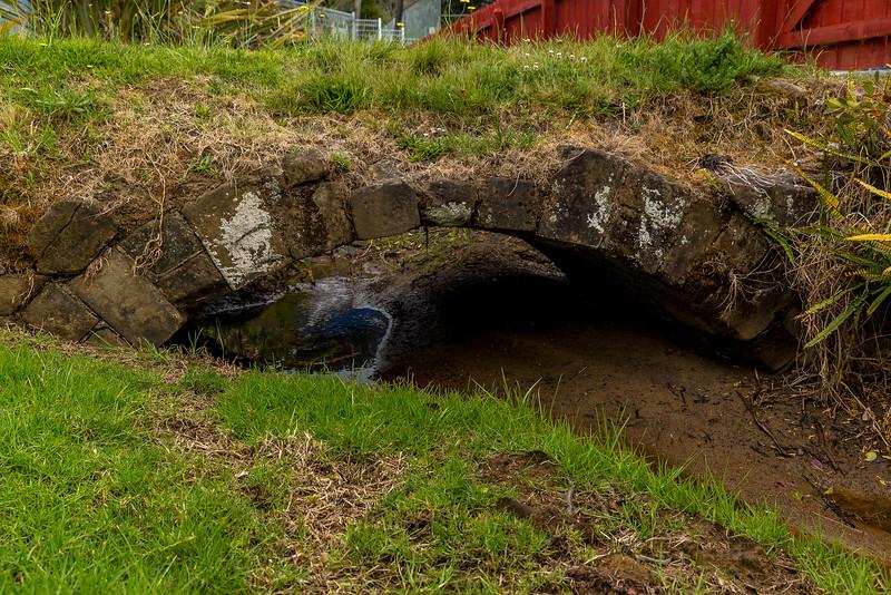 Die älteste Brücke von Neuseeland, für Fussgänger, Länge ca. 4 Meter