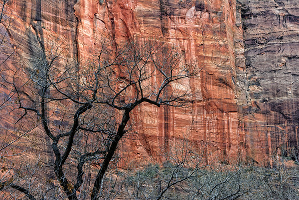 Zion National Park - 2006