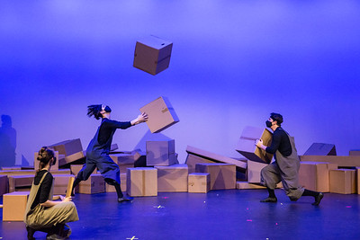 Cardboard Stories: Thinking Outside the Box