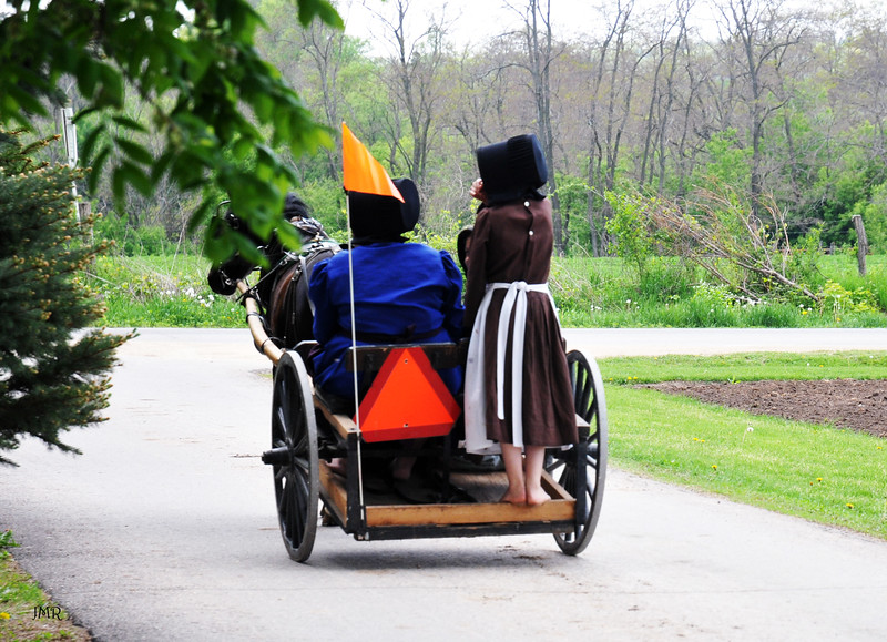 Amish buggy 3 .jpg