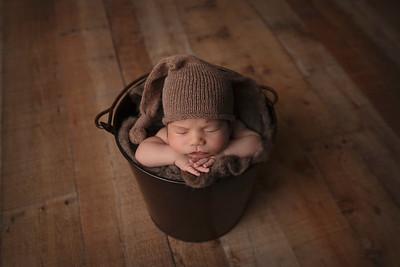Quinn S Newborn