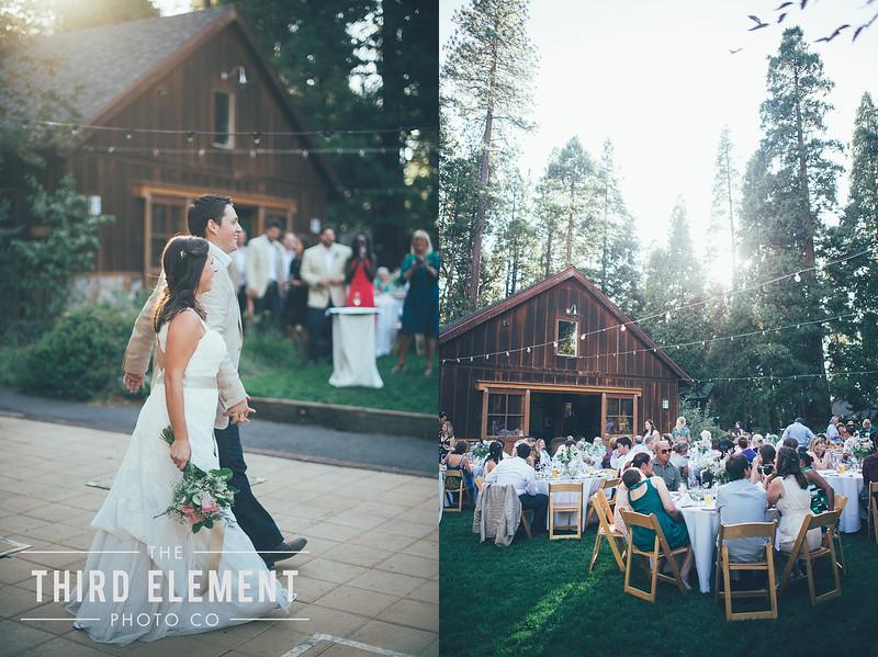 Third Element Photo Co Brittney + Errol Yosemite Wedding Hetch Hetchy San Francisco_0017.jpg