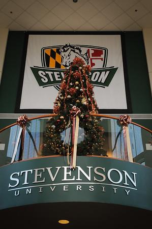 Stevenson Holiday 14