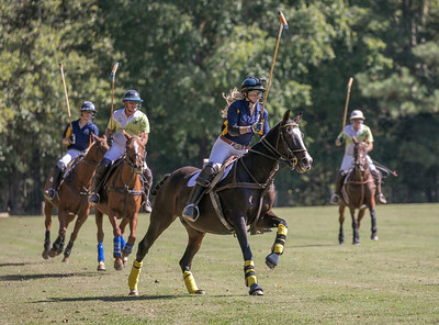 2017 Polo for Parkinsons