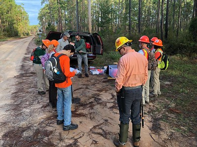 Apalachicola National Forest Trail Maintenance_Nov. 2018
