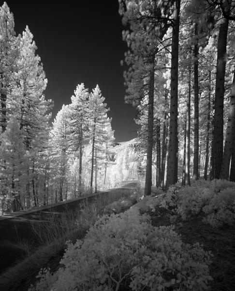 tahoe_585.jpg