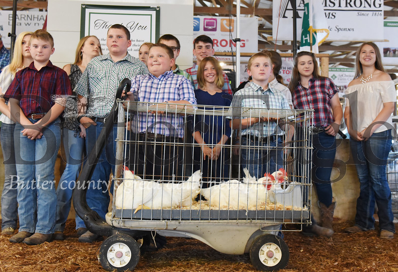 Harold Aughton/Butler Eagle: A crate of Cornish Cross chickerns were auctioned off for charity prior to the start of the 4-H-FFA Livestock Auction at the Butler Farm Show.