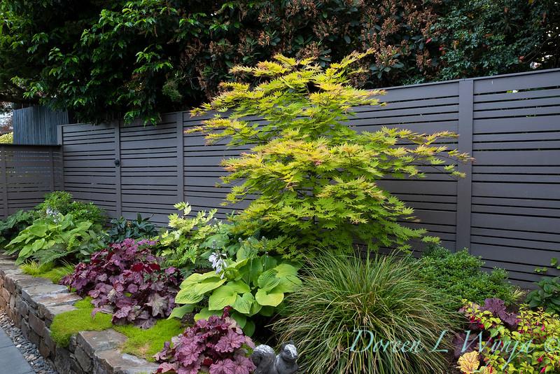 The Chartreuse Garden_1014.jpg