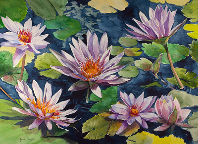 Jane Huggins - Watercolor