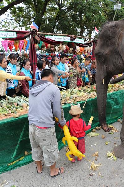 2014-11-14 Surin Elephant Welcome Feast 542.JPG