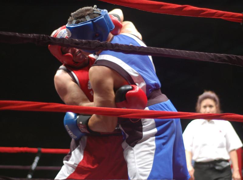 boxer9.JPG