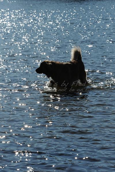 Sylvan Lake Park 11-25-11