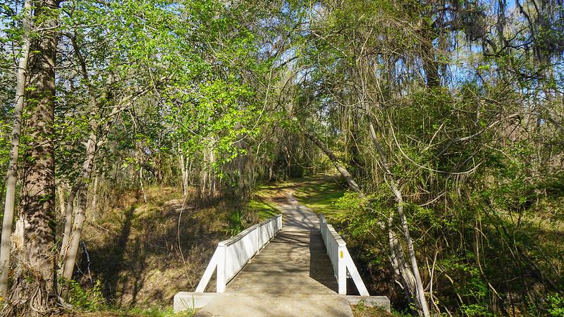 Bridge into Stephen Foster