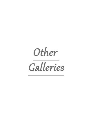 Other Galleries