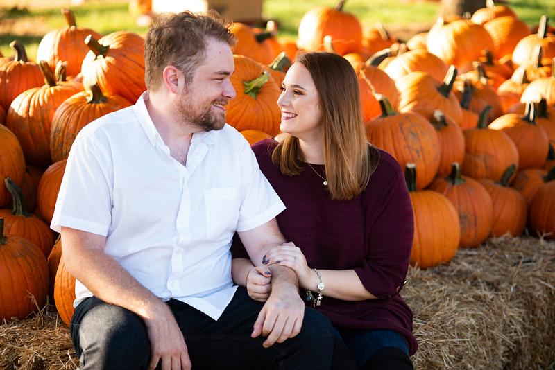 pumpkins_1.jpg