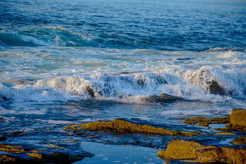 Maine Coast 86