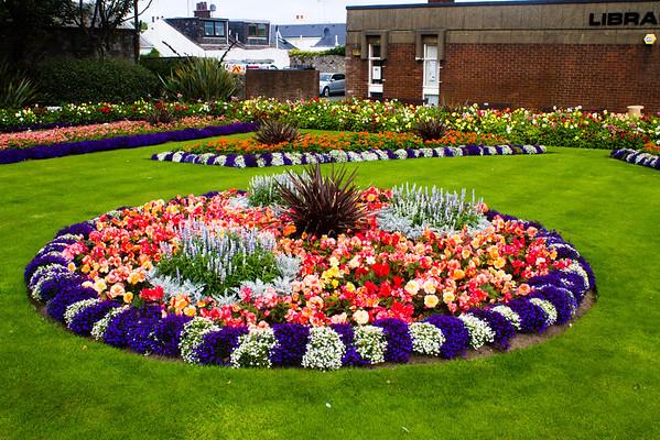 Flowers in Troon, Scotland