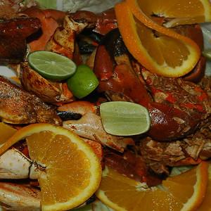 2005 - Baja California