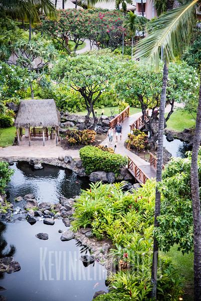 Maui2016-074.jpg