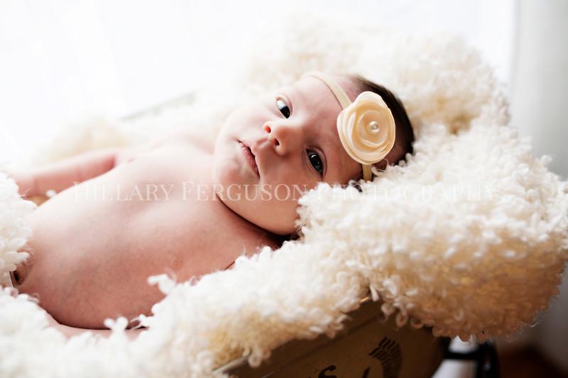 Hillary_Ferguson_Photography_Carlynn_Newborn183.jpg
