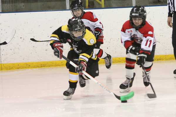 St. Catharines Mite Select 05-06 - 6-4-14