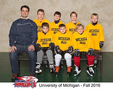 1 Univ of Michigan