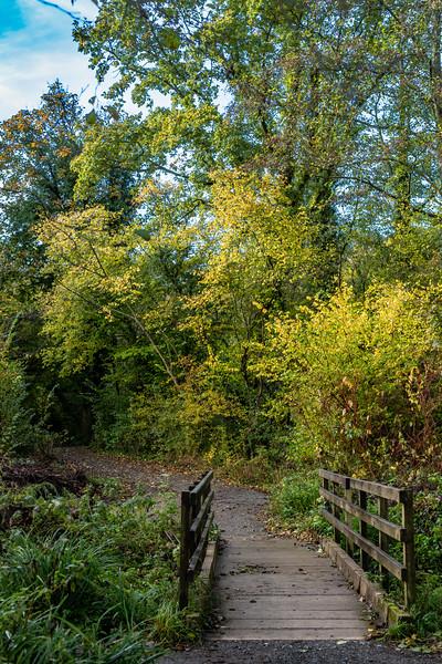 850_Woods Mill-5591-Edit.jpg