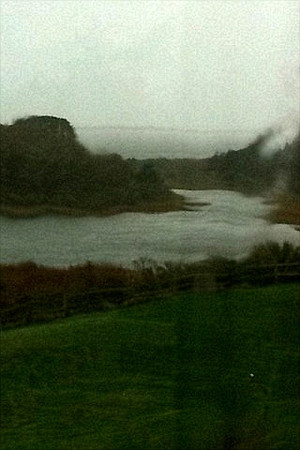 The wind is raging through the cove--a little grainy --shot through the rain and a screened window.