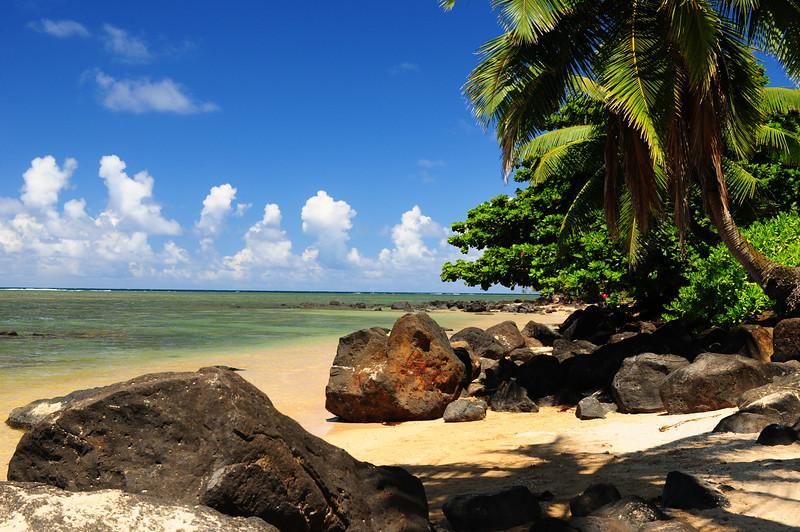 2012_Kauai_Hawaii_August_  0011.JPG