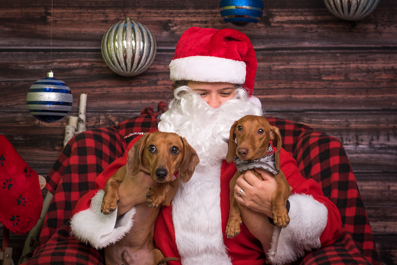 Masters N Dogs Santa Photos
