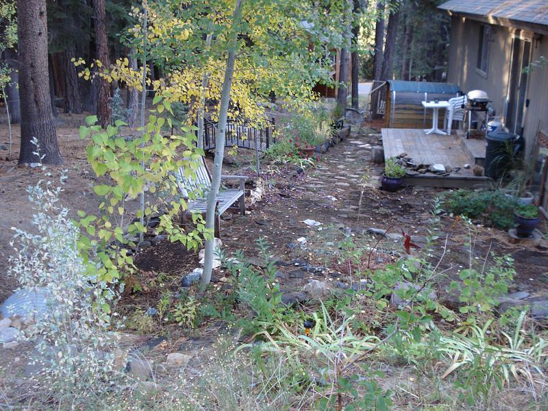 The fall garden 10-08-2012