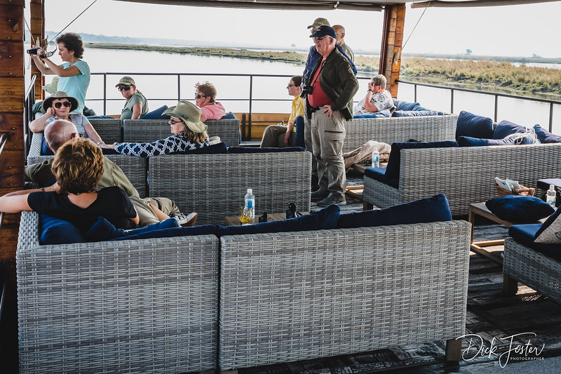 Chobe River Safari in Comfort