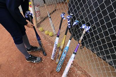 Varsity Softball vs Plainville 2017