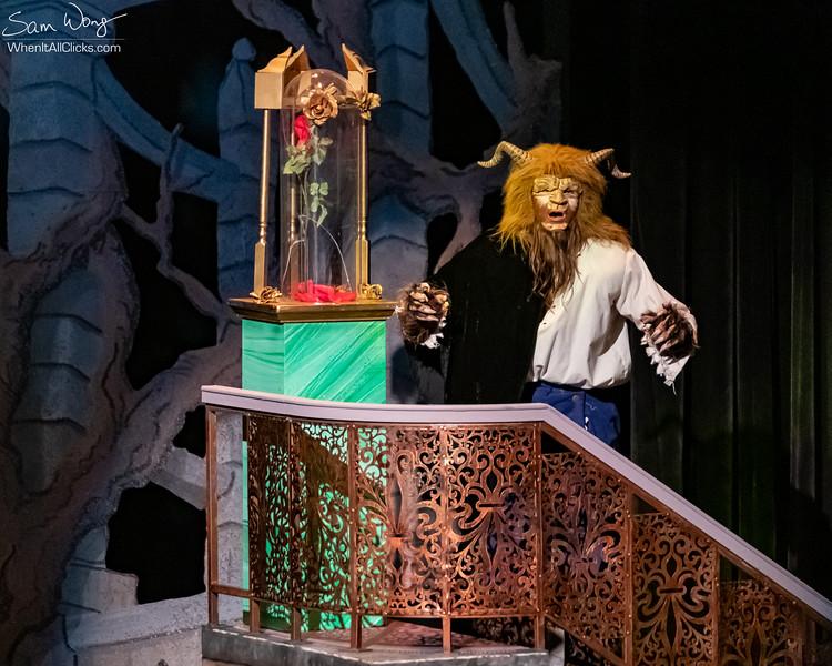 Beauty and the Beast 2018-11-08-65110.jpg