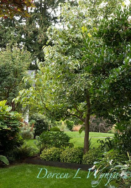Lisa Bauer - designer's garden_1336.jpg