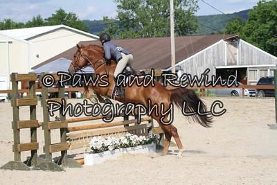 Hunter Ring: Children's Hunter Horse