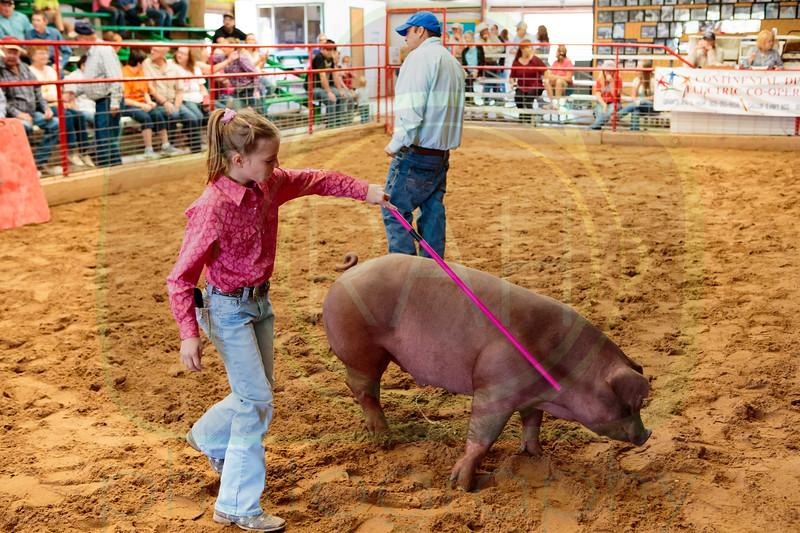 Bi-County Fair 9-2-2017
