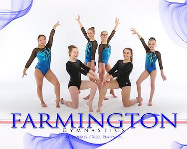 Farmington Gymnastics 2018