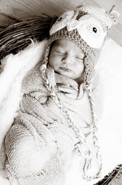 Hillary_Ferguson_Photography_Carlynn_Newborn001.jpg