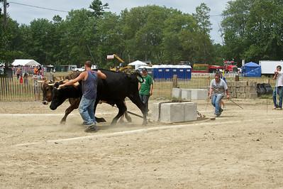 Bolton Fair 2010 - Oxen Pull 3200 lb