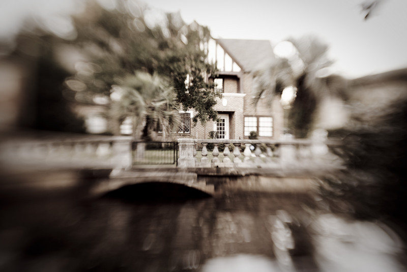 Lensbaby_tree_20091105_245.jpg