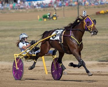 Race 1 Card 1 DCF 9/19/19
