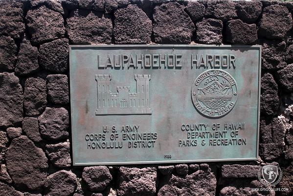 Laupahoehoe Harbor - Lava Rocks